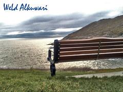 ( ld lkuai ) Tags: uk swansea weld mumbles  alkuwari