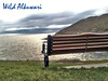 اشتــــاق لـــك (♥ ωєld Âlkuωaяi ♥) Tags: uk swansea weld mumbles لك alkuwari اشتاق