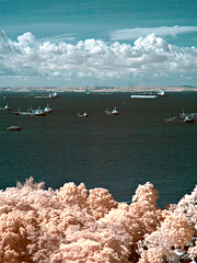 Of trees and ships... (nicklwc) Tags: travel trees sea clouds ir nikon singapore ships d70s infrared filters 1870mm seaview cokin p007
