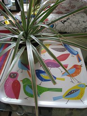 Bird tray from Ikea