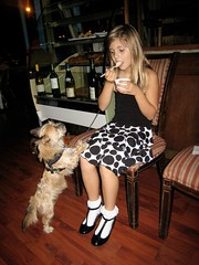 Ice Cream Moment (Lynn Friedman) Tags: sanfrancisco california ca party usa dog girl puppy stock haight smalldog icecream istock begging gettyimages lowerhaight younggirl stockphoto sfist 94117 partydress fillmorest 7x7 cafedusoleil loha beggingdog lynnfriedman wallerst