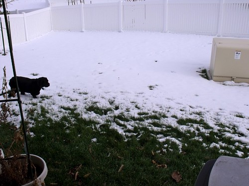 Snow...Yuck!