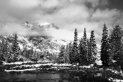 Cottonwood Creek (P. Oglesby) Tags: trees blackandwhite bw snow mountains water clouds october wyoming 1001nights 2009 blackdiamond grandtetonnp thehighlander godlovesyou cottonwoodcreek platinumheartaward 1001nightsmagiccity