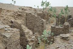 2b.Gold Chamber, Koumbi Saleh