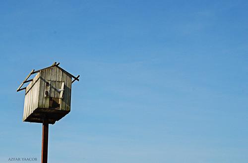 ::Rumah burung::