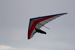 Gliding Swanborough