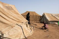Yemen IDPs 8
