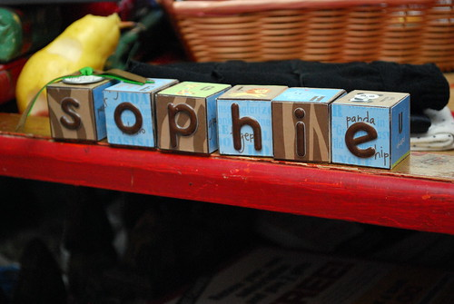 Sophie's New Blocks