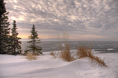 Grass and Trees at McKenzie Point (KarenR-TB) Tags: winter snow ontario ice lakesuperior breathtaking thunderbay mckenziepoint skyascanvas breathtakinggoldaward coppercloudsilvernsun breathtakinghalloffame exquisiteclouds
