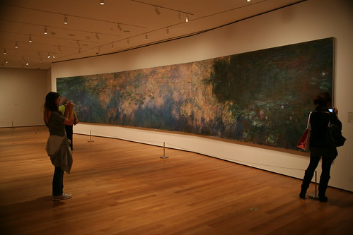 Monet's Water Lilies at MOMA, NYC by amanda ribas