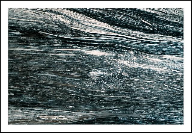 Wood Skin