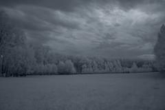 Late night (fedegrafo) Tags: italia nikond70 erba infrared friuli sesto prati infrarosso bagnarola fedegrafo federicobenvenuto comunai