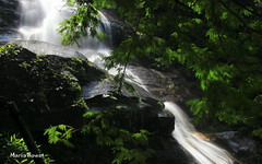 Cascatinha de Taunay - Floresta da Tijuca - Rio de Janeiro (mariohowat) Tags: riodejaneiro natureza longaexposio florestadatijuca cascatinha mygearandme mygearandmepremium mygearandmebronze mygearandmesilver mygearandmegold