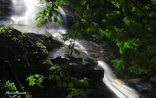 Cascatinha de Taunay - Floresta da Tijuca - Rio de Janeiro