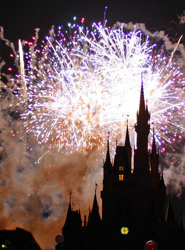 Disney World trip - day 7 - Wishes fireworks show