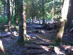 Footbridge along the lower portion of the old trail