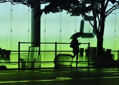 Rain walk (samthe8th) Tags: sam challengeyouwinner flickrchallengegroup flickrchallengewinner thechallengegame challengegamewinner lpyellow thepinnaclehof tphofweek9 shmedal fcgdone greenlanternoff