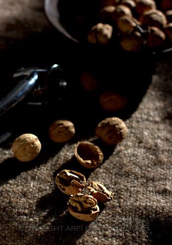 walnut 5 by ab '09