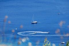 sea water sports making rounds (venetia koussia) Tags: blue seagulls swimming sundown geranium rockybeach sandybeach sporades skiathosisland summeringreece  greekfona