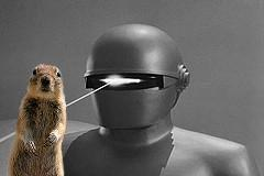 gort and squirrel