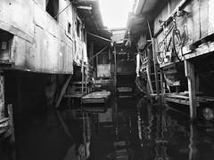 - - - (jojopensica) Tags: bicycle boat flood philippines ricoh pilipinas baha malabon bangka artex gx200 jobarracuda jojopensica pensica artexcompound ricohgx200