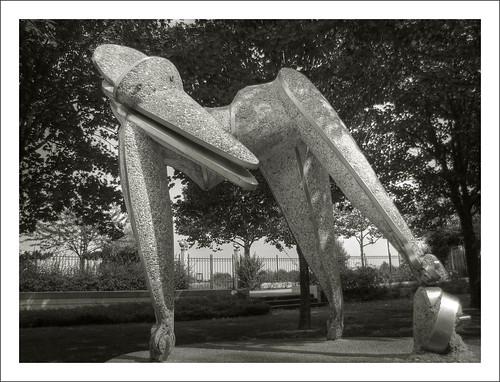 Les gogottes ont de très grandes jambes