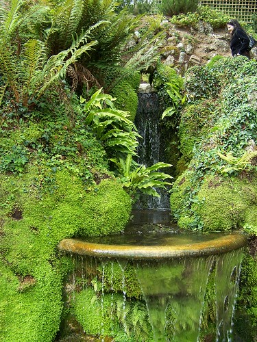 Powerscourt, Japanese garden