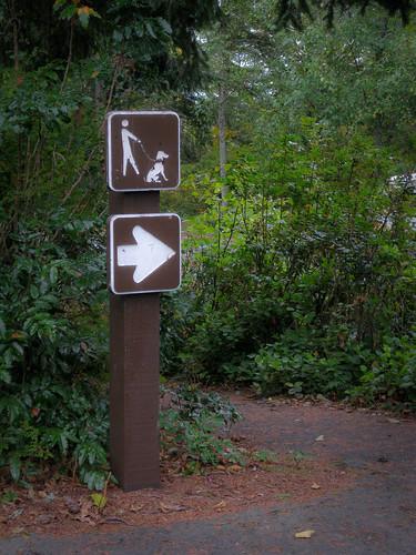 Dog's Okay This Way