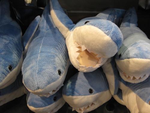 Sharks by kris0ten