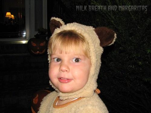 Oatmeal Bear