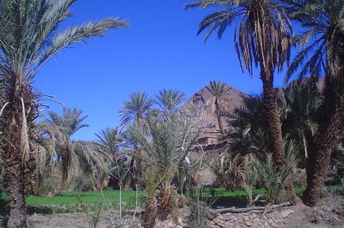 La Terrasse des Délices - Hotel Ouarzazate Morocco