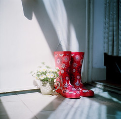 a sunny morning (a God's Child) Tags: china morning flowers tlr film sunshine shanghai 120film  rainboots seagull4bi