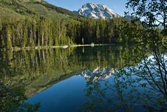 String Lake Grand Teton Reflection (Judy Rushing) Tags: reflection nikon grandtetonnationalpark gamewinner lakereflection nikond200 stringlake herowinner pregamewinner