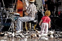 Inocencia (SandraCB) Tags: music valencia childhood birds animals children drums concert nikon child sandra drummer palomas infancia curiosity doves inocencia broch d40 carratala sandracb pgajos
