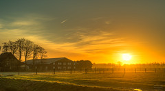 In Holland, even the Sun is kept behind a fence. (Alex-de-Haas) Tags: 50mm d5 hdr holland hollandseluchten nederland netherlands nikkor nikkor50mm nikon nikond5 noordholland thenetherlands westfriesland beautiful beauty boederij boerenland buiten buitenshuis daglicht daylight farmhouse farmland fieryskies fog foggy grasslands handheld highdynamicrange landscape landschap licht light meadow meadows mist mistig misty mooi morning ochtend orangeskies outdoor outdoors polder schoonheid skies sky skyfire sun sunrise sunriselight warm weiland weilanden winter zon zonsopgang