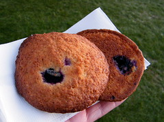 Blueberry Cookies @ Fusion Fest