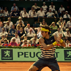62.Juan Martin Del Potro @ Roland Garros 2009 (Doudou) Tags: paris france men court square action atp sunny tommy tennis roland terre players roger simple haas philippe federer garros professionnelle battue messieurs internationaux chatrier tsonga delpotro