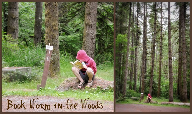 Book Worm in the Woods