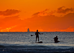 Sunrise SUP Burleigh Heads_015 (Michael Dawes) Tags: ocean camera friends people beach up silhouette yellow sunrise stand board country paddle australia surfing queensland towns sup manning mikemanning 61 goldcoast burleighheads unknownsurfer ef100400mmf4556lisusm canon50d standuppaddleboard likemike sandsargent
