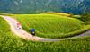 Walk By 行過 (olvwu | 莫方) Tags: mountain flower field farm taiwan daylily bud hualien picking hemerocallis jhutian liliaceae fuli jungpangwu oliverwu oliverjpwu orangedaylily olvwu goldenneedle hualiencounty sixtystonemountain jungpang hemerocallisfulvalinn fulitownship fulvousdaylily jhutianvillage