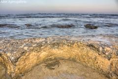 Mil Palmeras (Lets World! www.lets-world.com by Aitor Agirrega) Tags: sea summer beach mar rocks crab playa palmeras verano hdr rocas mil cangrejo milpa pilardelahoradada milpalmeras
