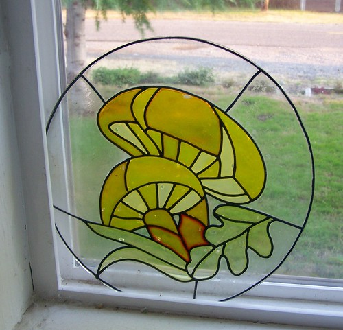 shroom window 1