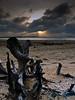 Driftwood in Merang (DSC7914) (Fadzly @ Shutterhack) Tags: beach d50 landscape seaside nikon searchthebest nikond50 driftwood bark malaysia trunk terengganu mys kualaterengganu merang afsdxnikkor1870mmf3545gifed fadzlymubin shutterhack