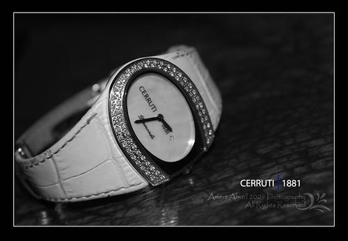 CE57603, Unisex - CERRUTI 1881 SUNGLASSES