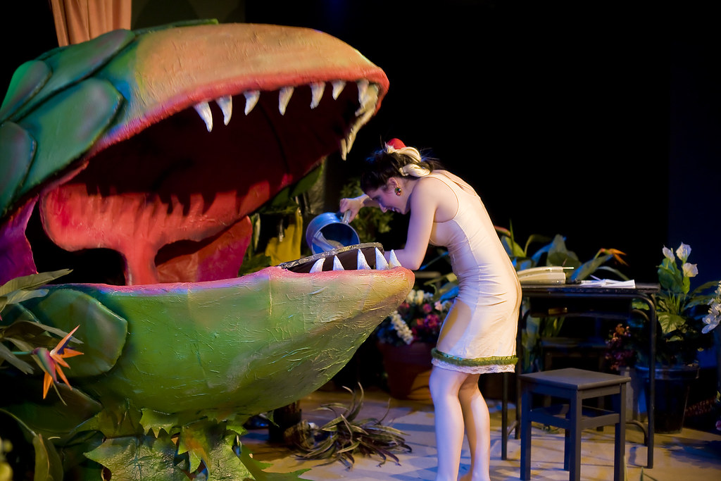 Musical Little Shop of Horrors