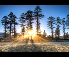 manly walk (Pawel Papis Photography) Tags: blue sunset people sun tree beach yellow walking sand manly sydney australia nsw rays footpath hdr clearsky beachwalk bulding lateafternoon sigma18200 3exp canon400d