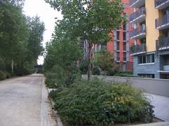 Frankfurt Sachsenhausen Deutschherrnufer 2 (shibumiug) Tags: frankfurt sachsenhausen deutschherrnufer