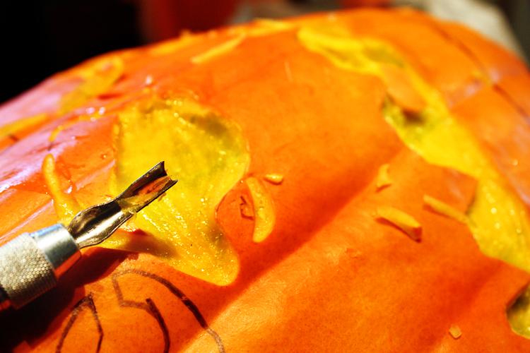 pumpkin 20098
