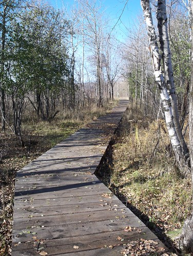 Grassy Point Boardwalk