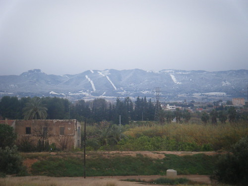 Carrascoy nevado 1